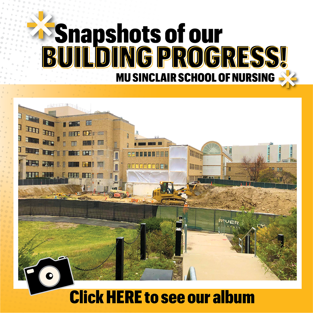 SSON Building Progress image